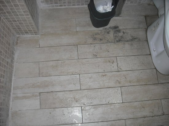 Sumo Cat Hostel: Bathroom floor