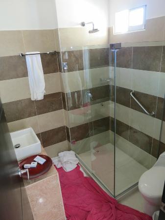 Atlantic Lux Hotel : small clean bathroom