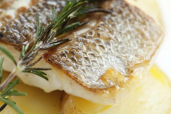 Scorpion Mediterranean Bar and Grill: Grill Fish