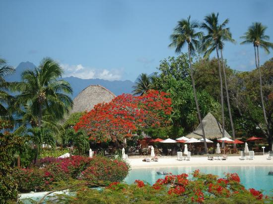 Le Meridien Tahiti: Fragrant flowers everywhere
