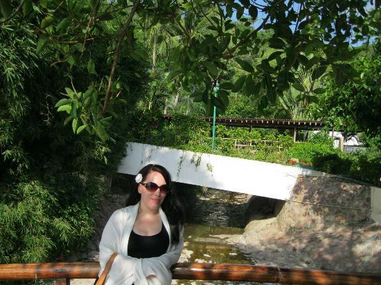 Hyatt Ziva Puerto Vallarta: Beautiful resort! cant wait to go back!!!