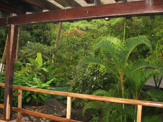 Hyatt Ziva Puerto Vallarta: walking around grounds