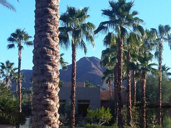 Hyatt Regency Indian Wells Resort & Spa: The to-die-for view from the pool