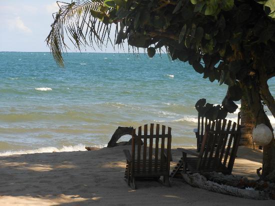 Tipple Tree Beya : beach and grounds