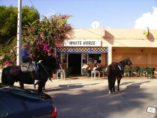 Horses at the White Horse
