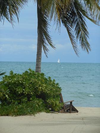 Tipple Tree Beya: the beach