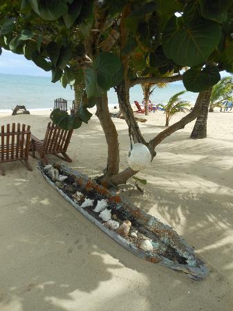 Tipple Tree Beya: the beach and grounds
