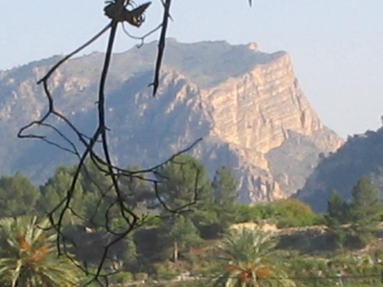 Finca El Campillo: Sierra de la Navela