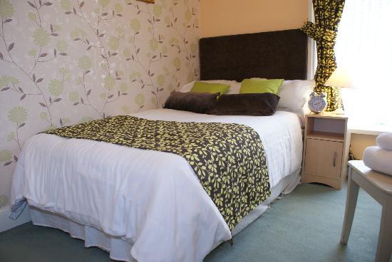 Adelphi Guest House: Single