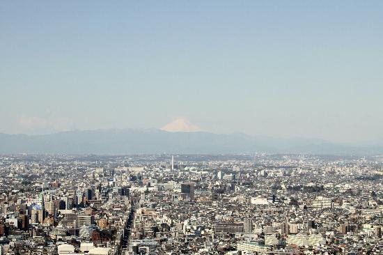 Park Hyatt Tokyo: view of Mt. Fuji