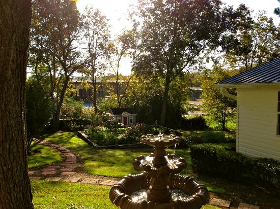 Chestnut Inn : Beautiful backyard