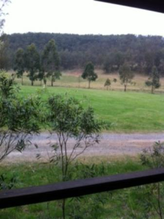 Mystwood: The view from our front verandah