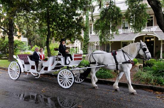 Amelia-øya, FL: Listen to the history of Amelia Island on a horse-drawn carriage tour