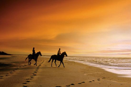 ‪جزيرة أميليا, فلوريدا: Amelia Island is one of the few destinations in the U.S. offering horseback riding on the beach