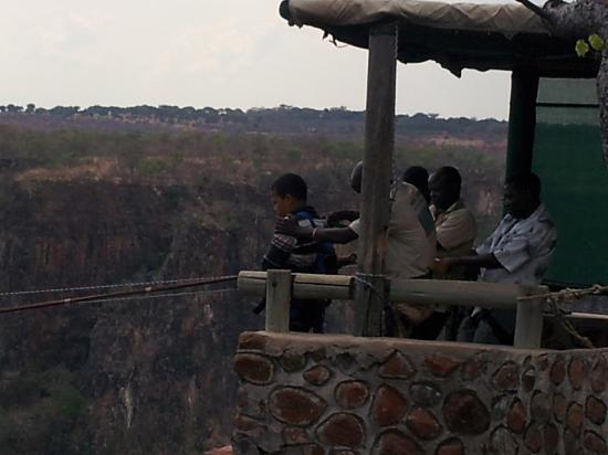 Zambezi Eco Adventures: Even my 11yr old brother was brave enough to do it!