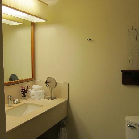 Hotel Vitale, a Joie de Vivre hotel: bathroom view