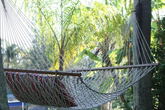 Beach Road Villas: relaxing by the water in THE hammock....ah