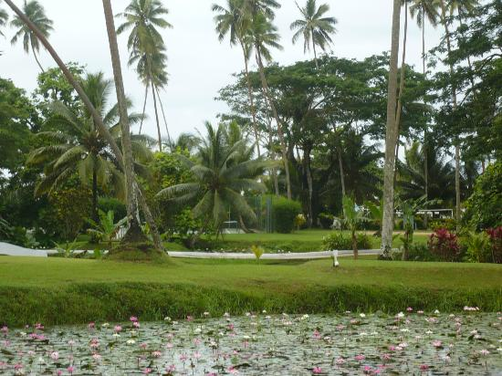 Koro Sun Resort and Rainforest Spa: Beautiful grounds