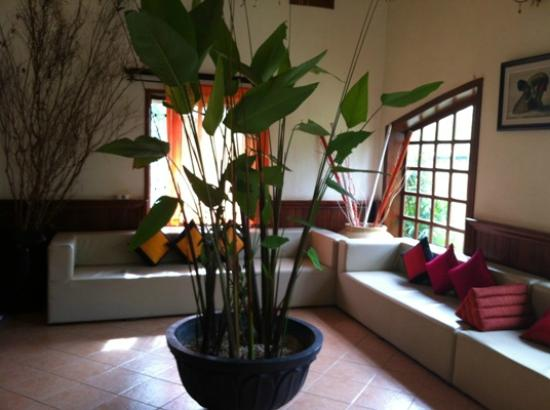 Boutique Cambo Hotel: lobby