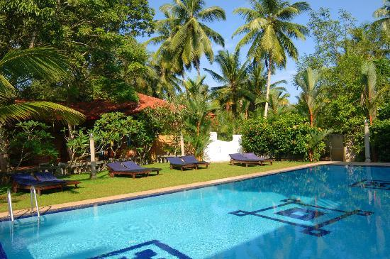 Panchi Villa: Pool View