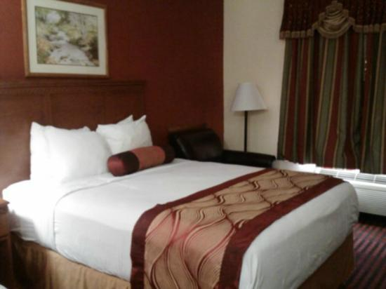 Best Western Canton Inn: Linens/Bedding