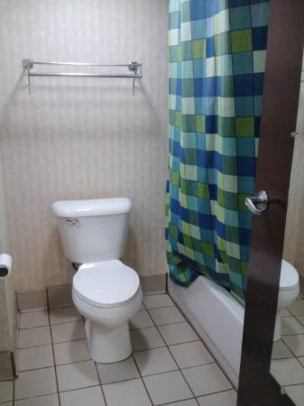 Best Western Canton Inn: Bathroom