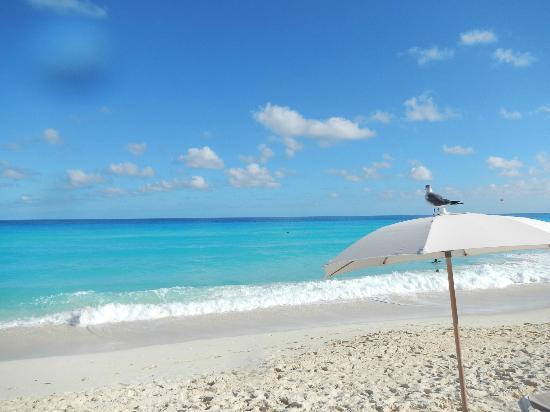 Hard Rock Hotel Cancun: What an amazing place to be... 