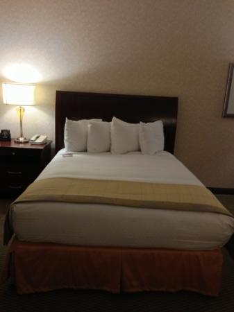 DoubleTree by Hilton Hotel Portland: the bed