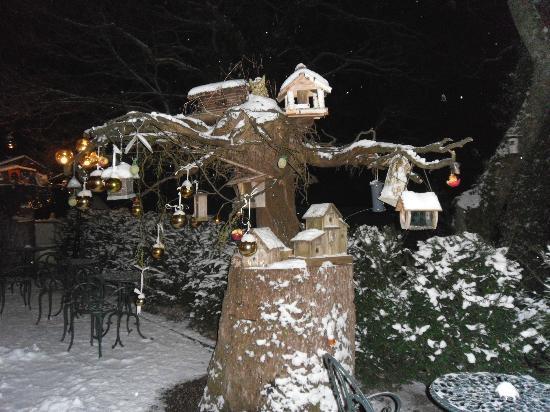 Hostellerie La Cheneaudiere - Relais & Chateaux: Vue depuis la véranda