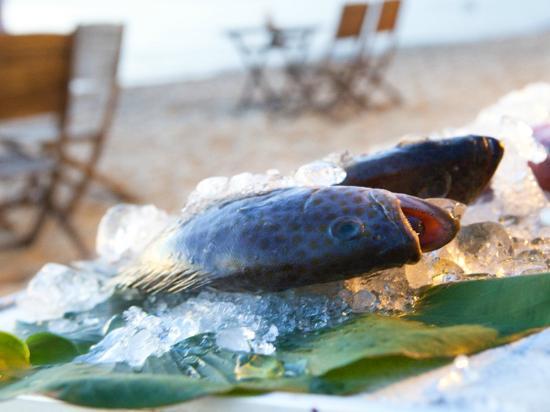 Arcadia Phu Quoc Resort: Beach BBQ