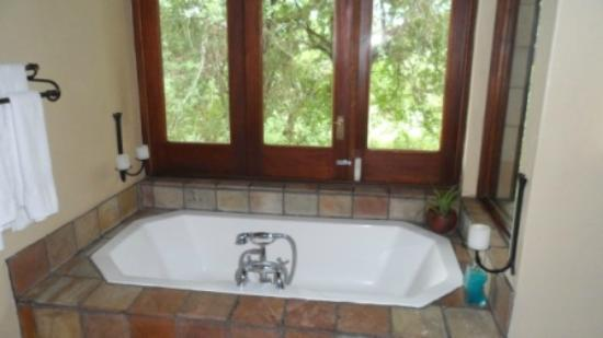 Elephant Plains Game Lodge: View from the bathtub