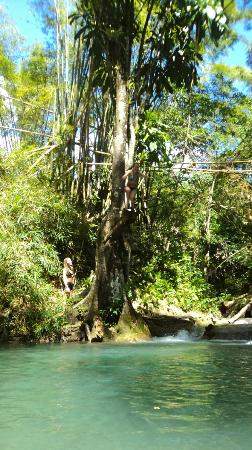 Thriller Tours Jamaica: MF waterfalls