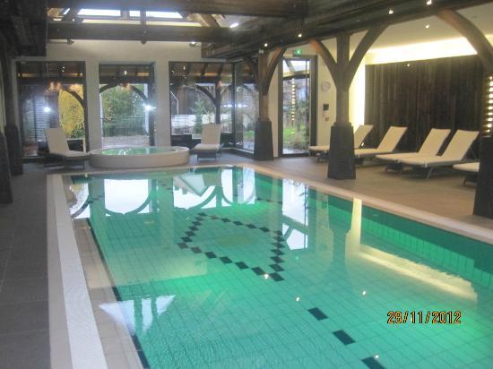 Hotel Le Parc : pool