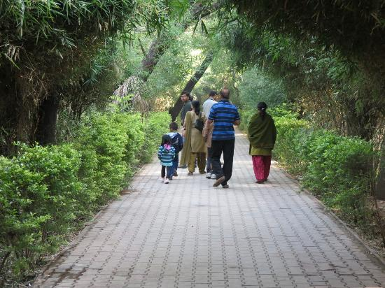 Indroda Nature Park: With family...
