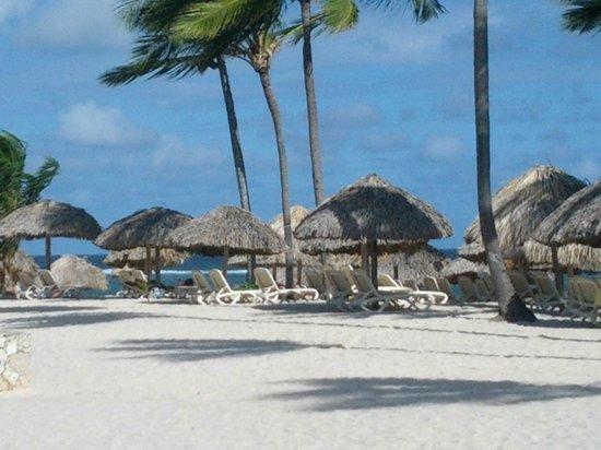 Hotel Majestic Colonial Punta Cana: Plage vu du restaurant