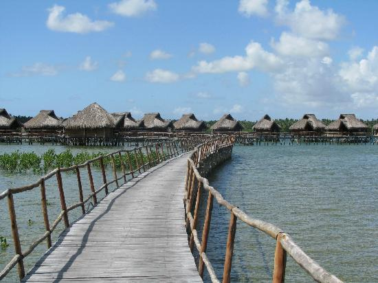 Flamingo Bay Water Lodge: Chalets