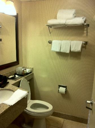 Sheraton Birmingham: Bathroom