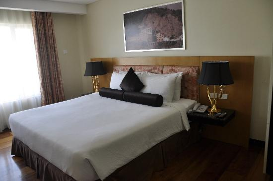 Hotel Elizabeth Cebu: room
