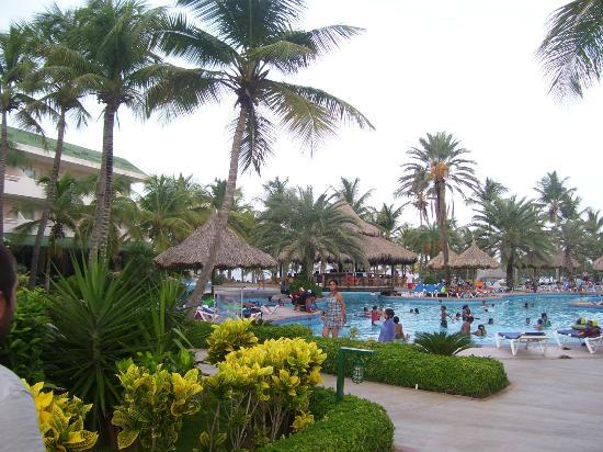 Isla Caribe Beach Hotel: Piscina área Real