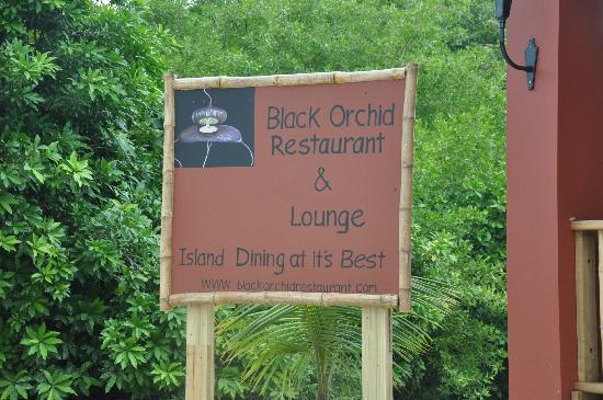 Black Orchid Restaurant: Come & Join us for Breakfast, Lunch or Dinner