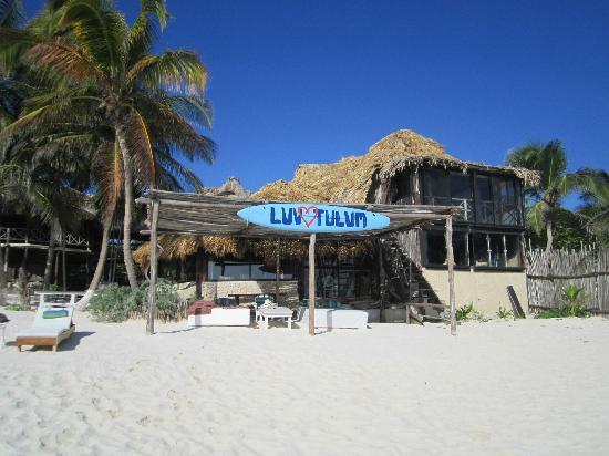 Luv Tulum : Vue du restaurant depuis la plage