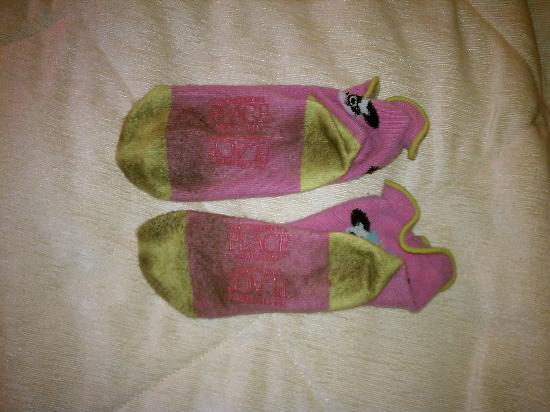 Quality Inn Historic East - Busch Gardens Area: This is what my daughters socks look like after she walked around the room without her shoes on