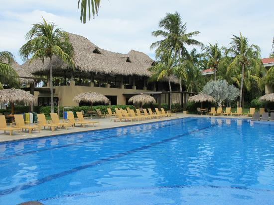 Flamingo Beach Resort & Spa: Large Pool
