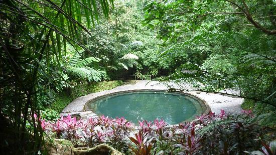 Soda Pool Bild Von Hidden Valley Springs Resort Calauan Tripadvisor