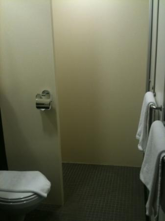 easyHotel Dubai: poor photo of the bathroom!
