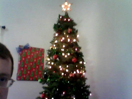 Super 8 Kingdom City: Christmas Tree, 2012
