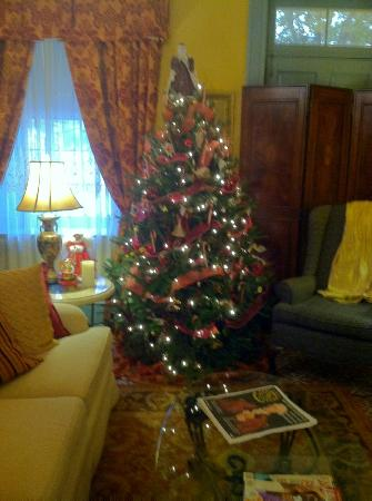 Casa de Solana Bed and Breakfast: Christmas tree in the Palour