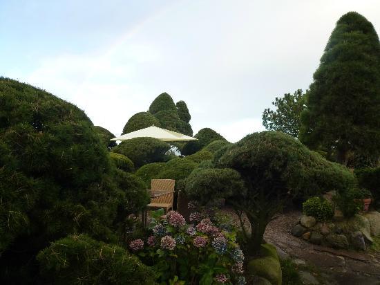 Die Kupferkanne: Garten