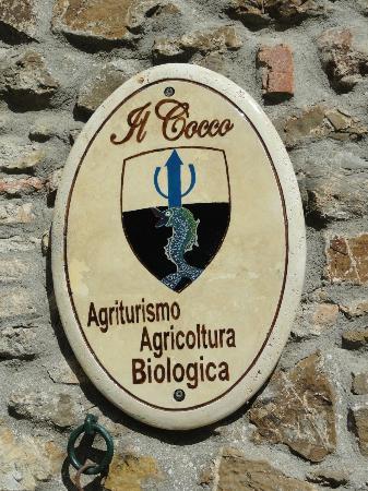 Montalcino, Italy: Il Cocco