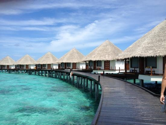 Adaaran Prestige Water Villas: Water Villas